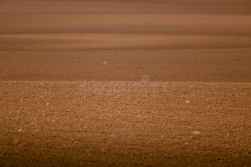 En härlig brun modell på ett fält i vår Abstrakt begrepp texturerad bakgrund arkivbilder