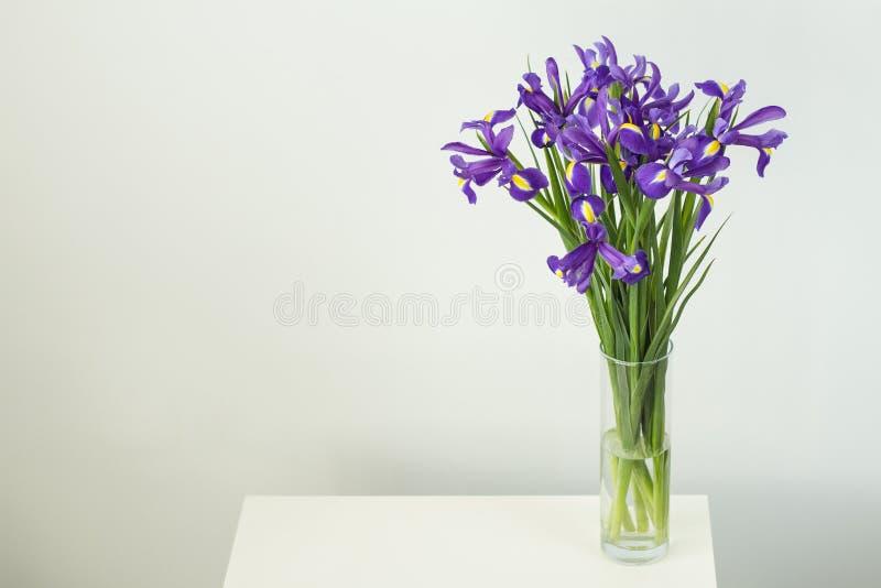 En härlig bukett av mjuka purpurfärgade iriers för en födelsedaggåva i en vas av vatten på en vit tabell på en vit bakgrund arkivbilder