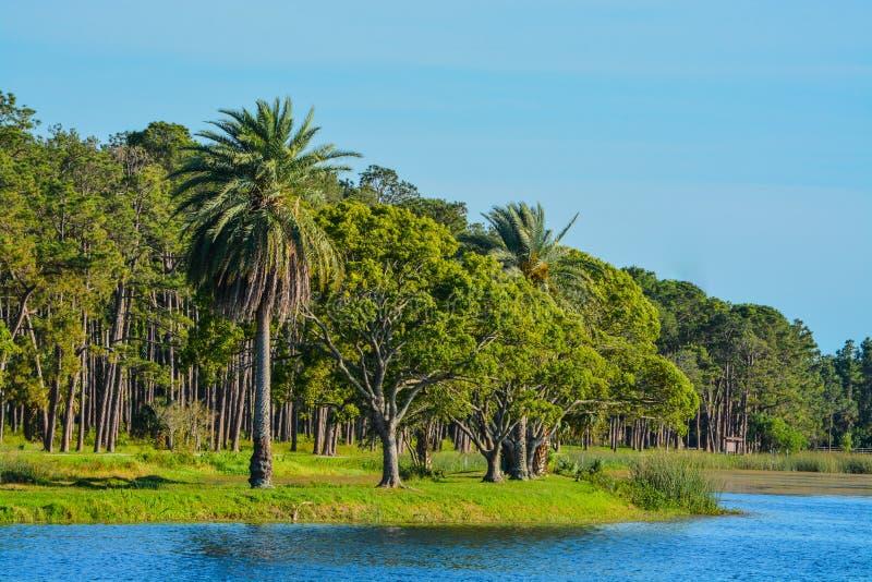 En härlig dag för en gå och sikten av ön på John S Taylor Park i Largo, Florida arkivfoto