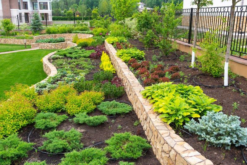 En härlig hemträdgård arkivfoto