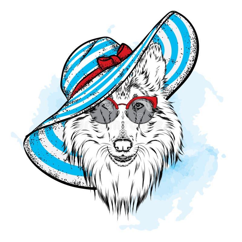 En härlig hund i en sommarhatt och exponeringsglas collie Fullblods- valp Vektorillustration för en vykort eller en affisch royaltyfri illustrationer