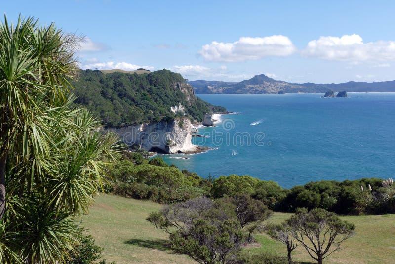 En härlig kustlinje, Nya Zeeland fotografering för bildbyråer
