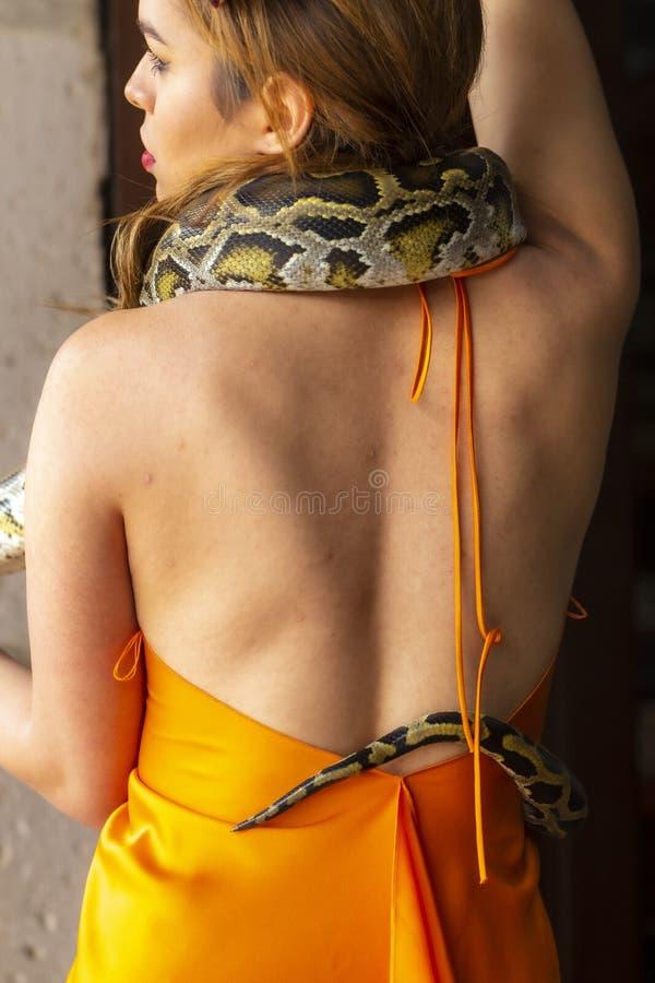 En härlig latinamerikansk orm för Constrictor för brunettmodellPoses With A Boa runt om hennes kropp arkivbilder