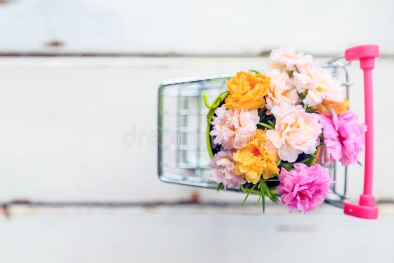 En härlig mossa steg blommor i en kortkortgräsplanhink i mini- bil arkivfoton