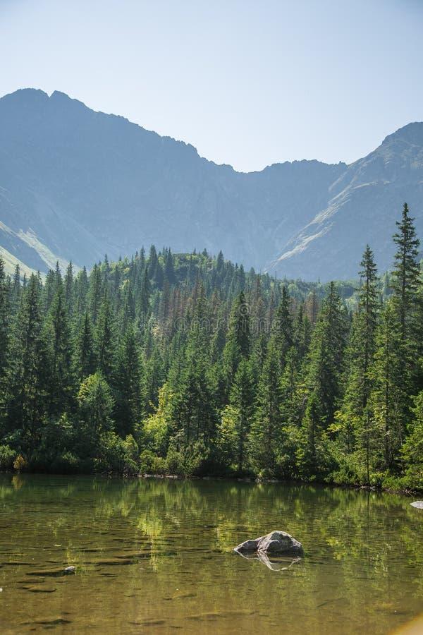 En härlig ren sjö i bergdalen i stillhet, solig dag Berglandskap med vatten i sommar royaltyfri foto