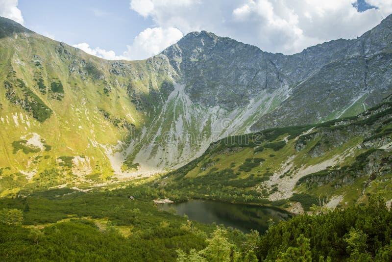 En härlig ren sjö i bergdalen i stillhet, solig dag Berglandskap med vatten i sommar fotografering för bildbyråer