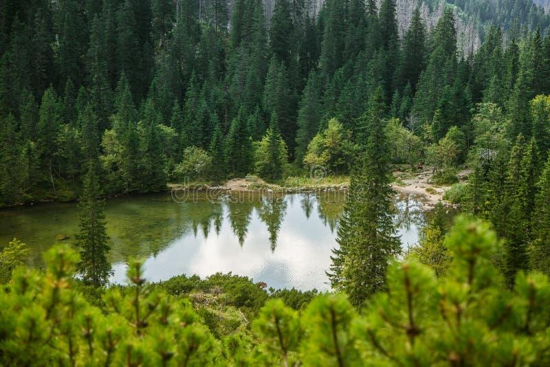 En härlig ren sjö i bergdalen i stillhet, solig dag Berglandskap med vatten i sommar arkivbild