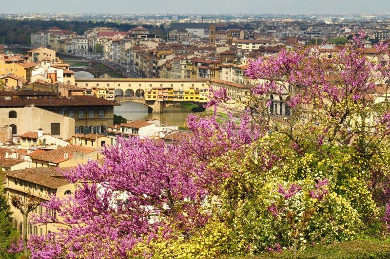 En härlig sikt av den berömda Ponten Vecchio i Florence på River Arno i Italien som tas från Piazzale Michelangelo på en vårdag royaltyfri bild