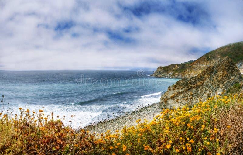 En härlig sikt av den Kalifornien kustlinjen längs statlig väg 1 - USA royaltyfri foto