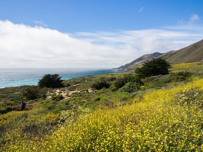 En härlig sikt av Kaliforniens kustlinje längs huvudväg 1, stora Sur royaltyfria bilder