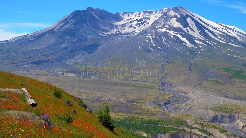 En härlig sikt av södra Colwater Ridge Trail på Mount Saint Helens arkivbilder