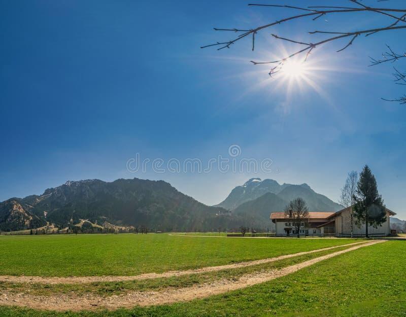 En härlig sommardag i sydlig bavaria som håller ögonen på fjällängarna arkivbilder