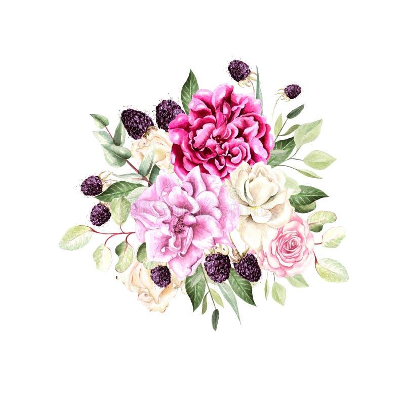 En härlig vattenfärgbukett med rosor och pionblommor, eukalyptus och björnbär stock illustrationer