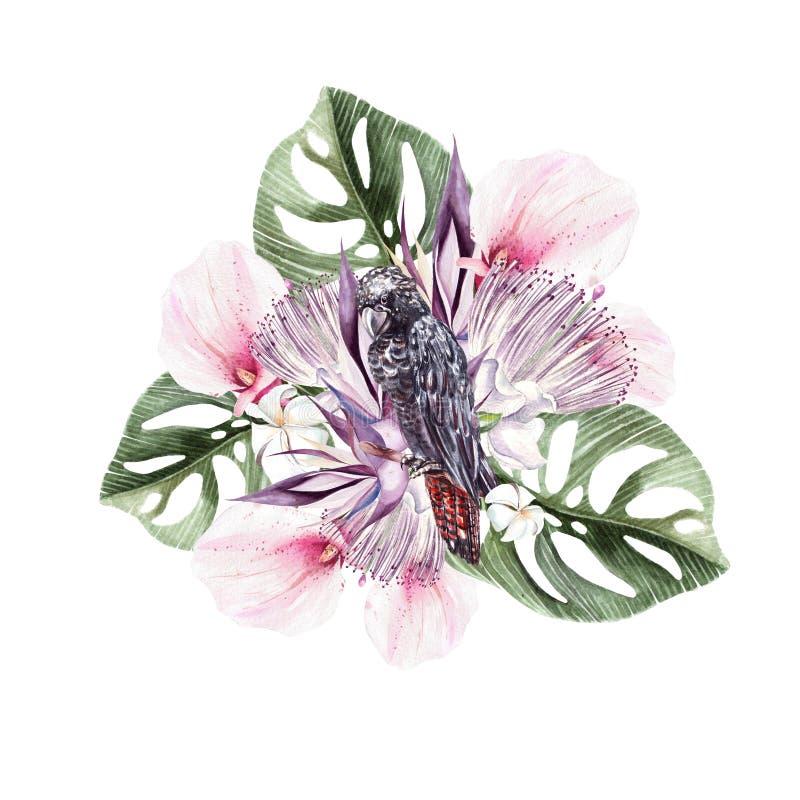 En härlig vattenfärgbukett med en svart kakadua och sidor av en palmträd, blommor eller callaen royaltyfri illustrationer