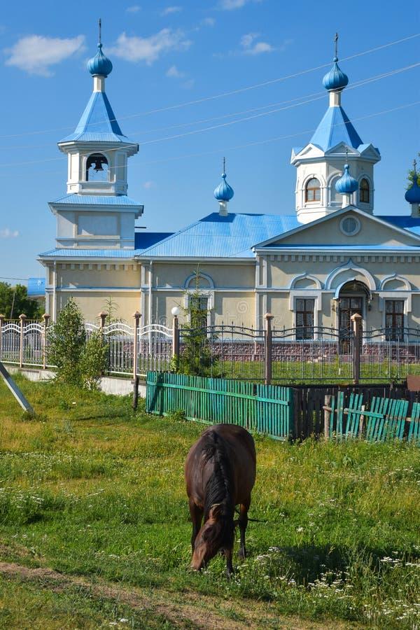 En häst och en ortodox kyrka i ryssbygd arkivfoton