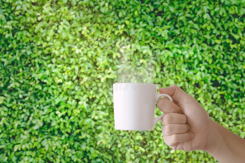 En hållande kopp kaffe för hand royaltyfria bilder