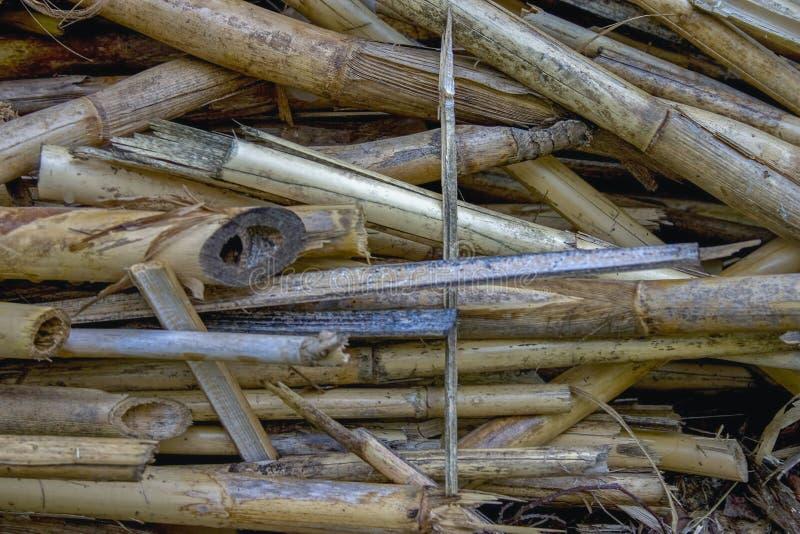 En hög av torra rottingar som används som ett byggandematerial royaltyfri foto
