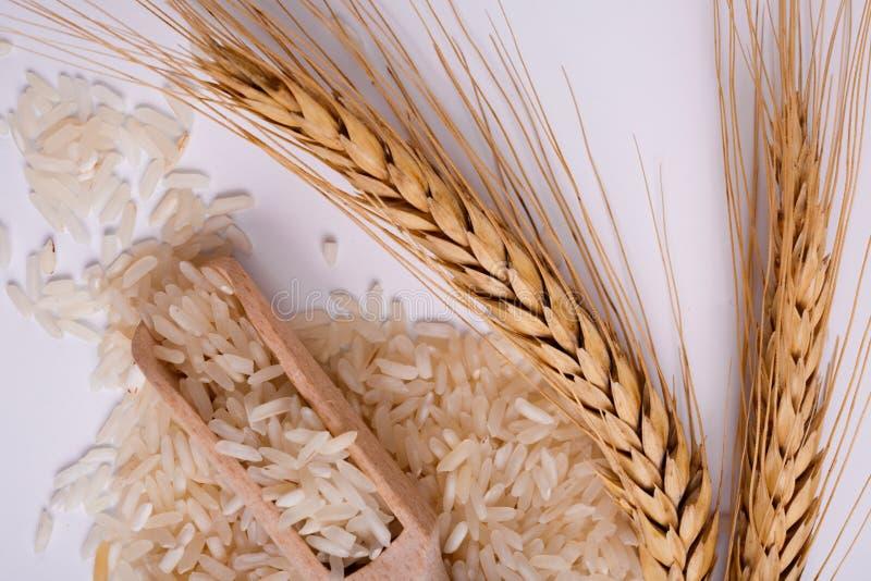 En hög av vita ris med en kvist av vete på en vit bakgrund övre sikt arkivfoto