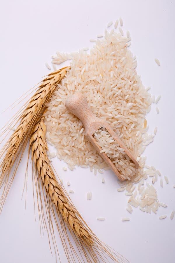 En hög av vita ris med en kvist av vete på en vit bakgrund ovanför sikt royaltyfri foto