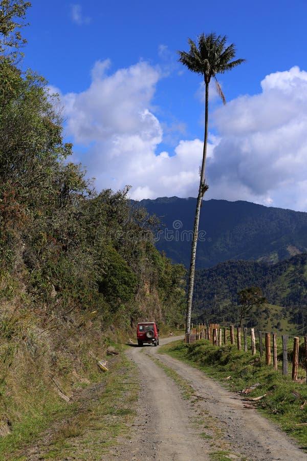 En högväxt vaxpalmträd bredvid en bil som är mest högväxt gömma i handflatan, ceroxylonquindiuense, den Cocora dalen i Colombia arkivfoton