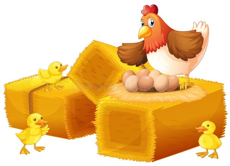 En höna med hennes ägg och fågelungar vektor illustrationer