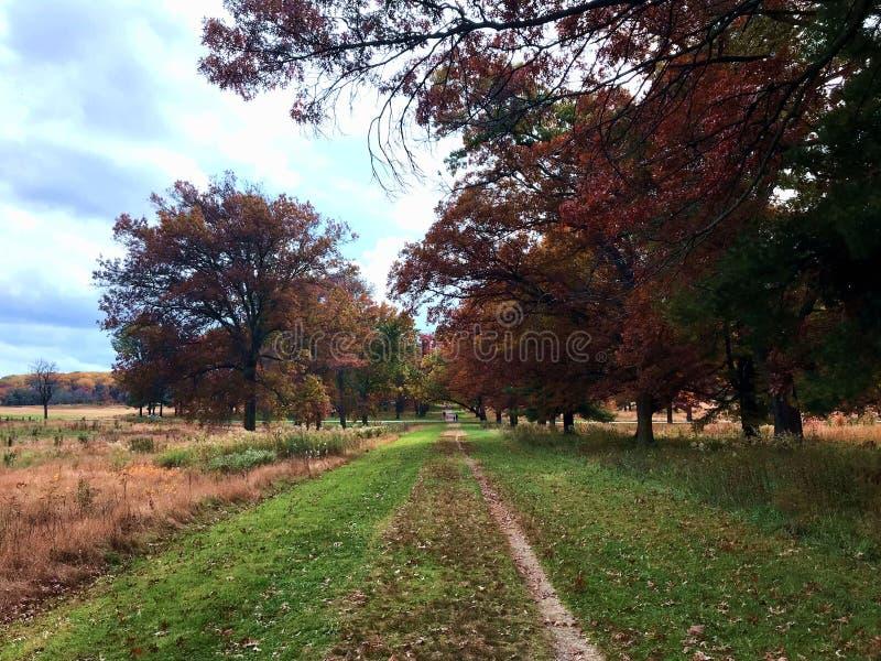 En höstmorgon på dalsmedjan nationella historiska Park som lokaliseras i dalsmedja, Pennsylvania, USA royaltyfria foton