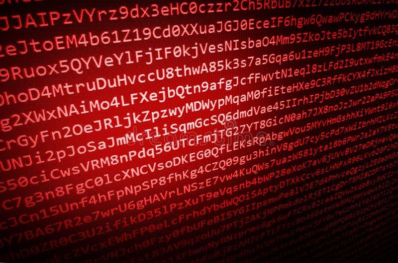 En hackerdatastöld datavirus royaltyfri illustrationer