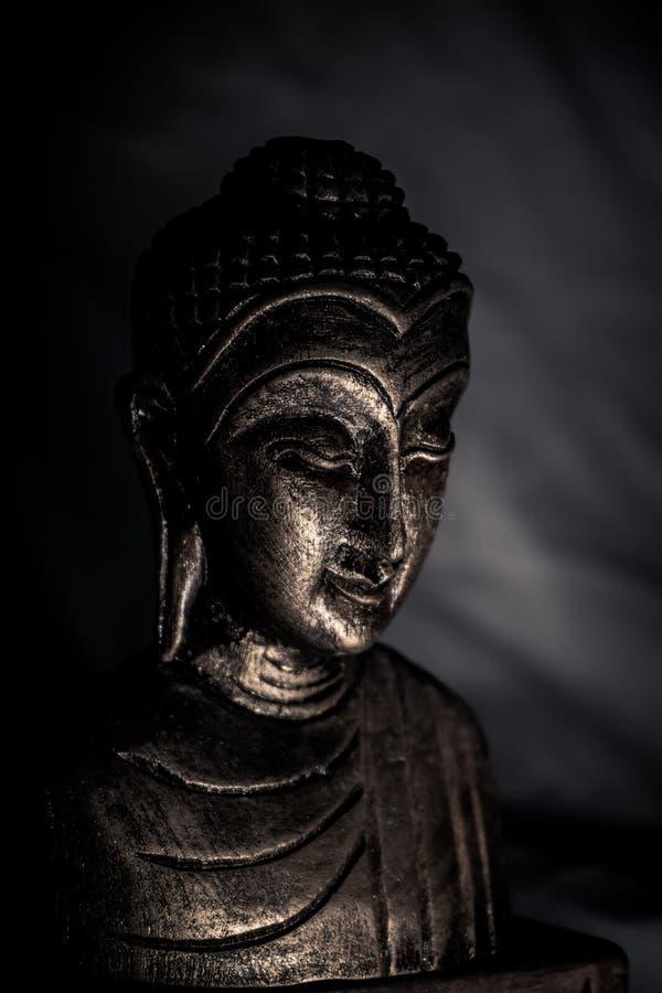 En halv Buddha-staty i skuggorna royaltyfri bild