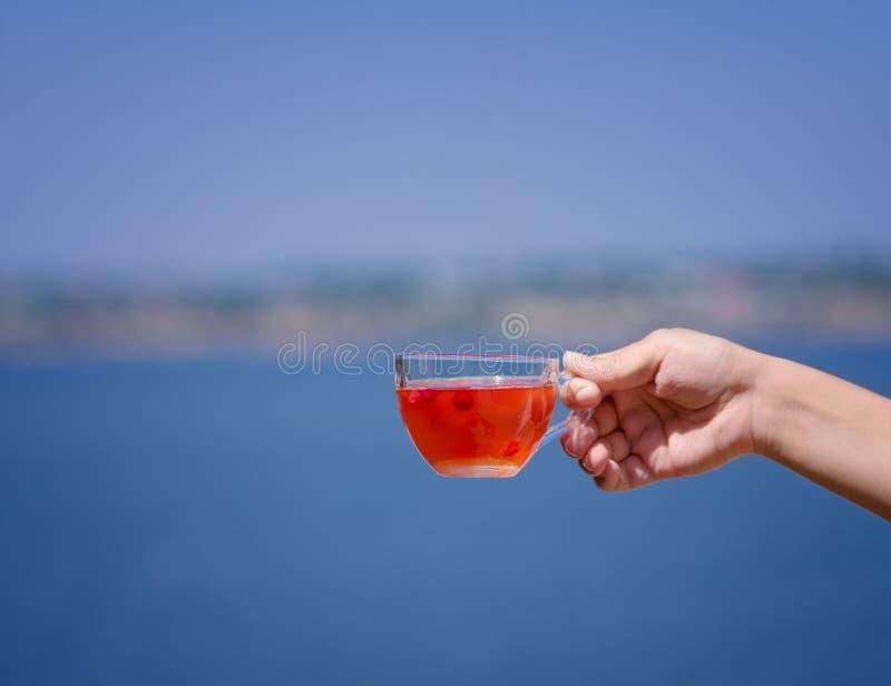 En hand för dam` s rymmer en varm röd drink från bär på en suddig bakgrund för floden Nytt te för lös jordgubbe royaltyfria bilder