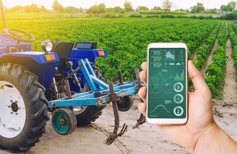 En hand rymmer en smartphone med infographics på bakgrund av traktoren och den bulgariska pepparkolonin Lantbruk och jordbruk arkivfoton