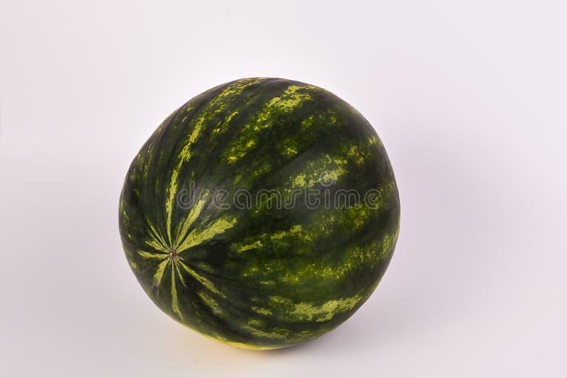 En hel söt organisk vattenmelon på fast vit bakgrund fotografering för bildbyråer