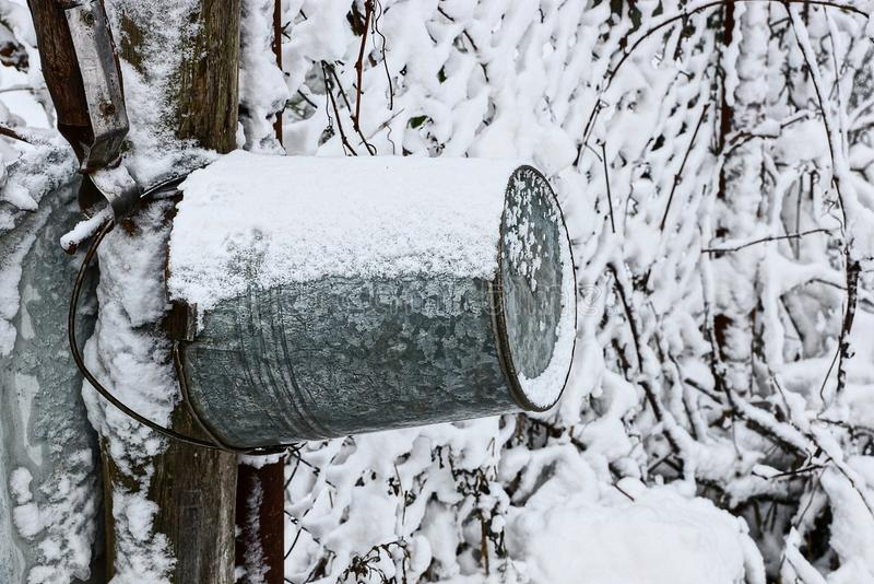 En hink för grått järn hänger på en träpol i snön nära brunnen royaltyfri fotografi