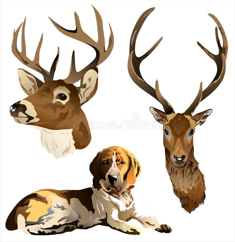 En hund och ett hjorthuvud royaltyfri illustrationer