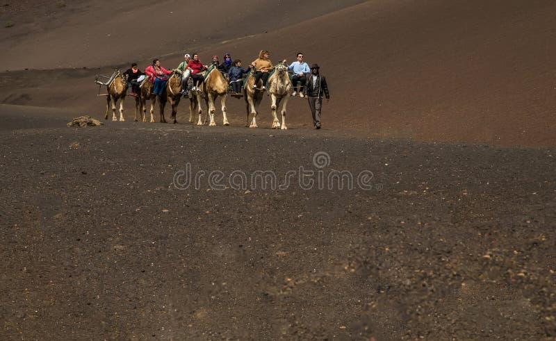 En husvagn av kamel av packar med ryttare fotografering för bildbyråer