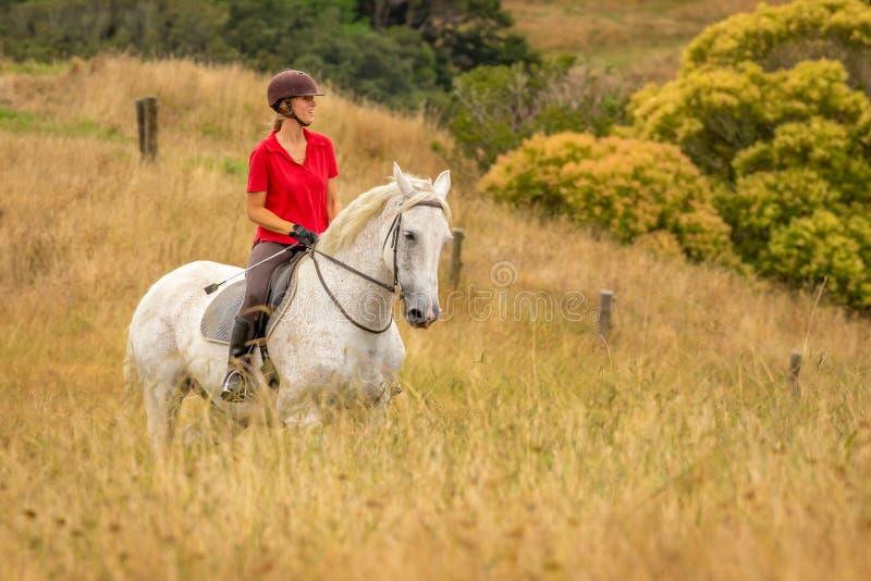 En iklädd attraktiv lycklig le ung kvinna en röd poloskjorta som rider hennes vita häst till och med långt torkat guld- arkivbild