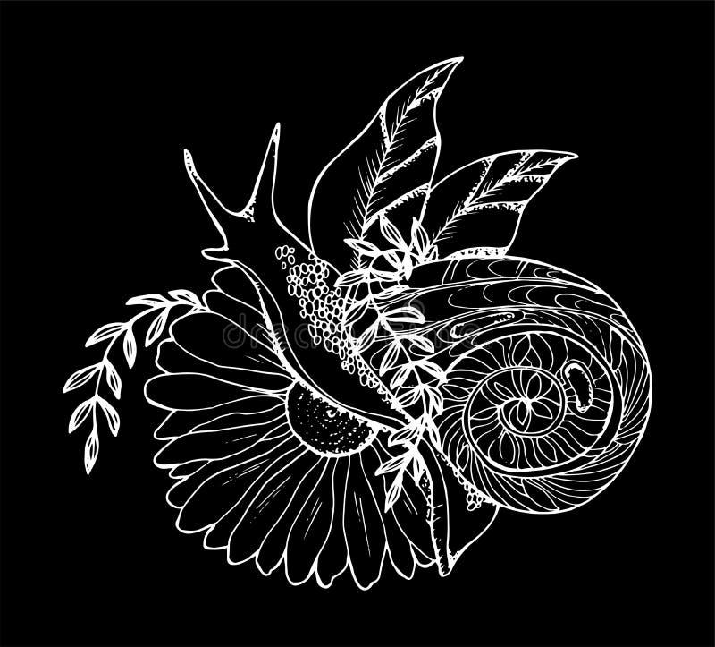 En illustration av en snigel som kryper till och med en blomma Svartvit teckning Krita p? en blackboard vektor illustrationer