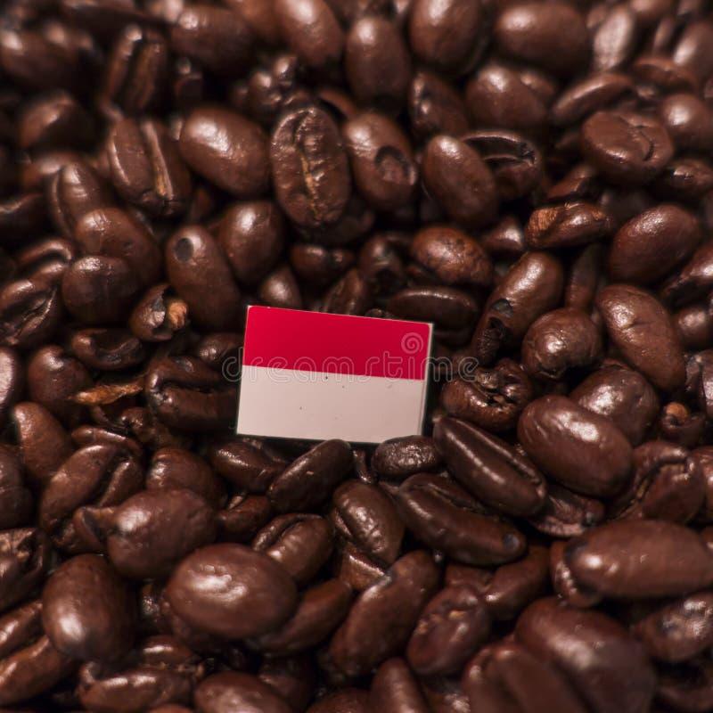 En Indonesien flagga som förläggas över grillade kaffebönor arkivbilder