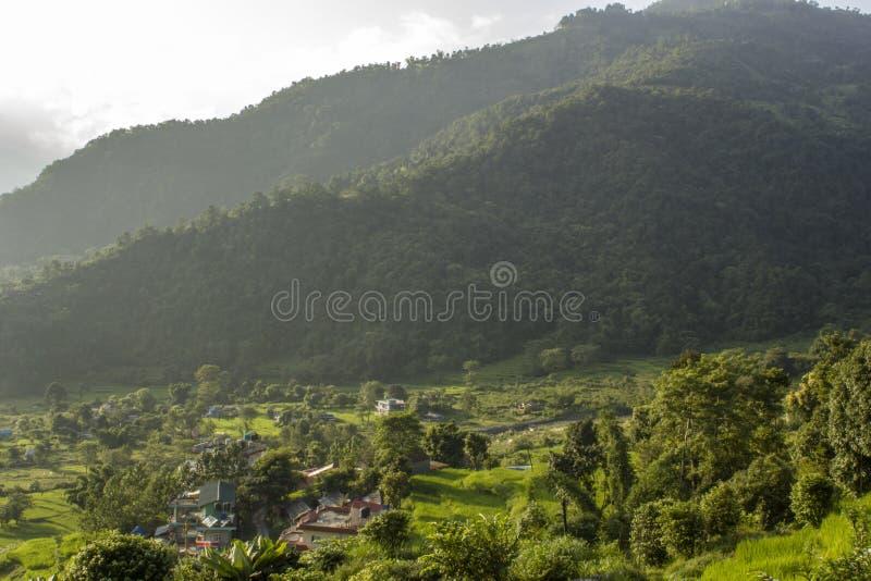 En by inhyser på ljust - gröna risterrasser av fält på backen mot bakgrunden av skogsbevuxna berg arkivfoton