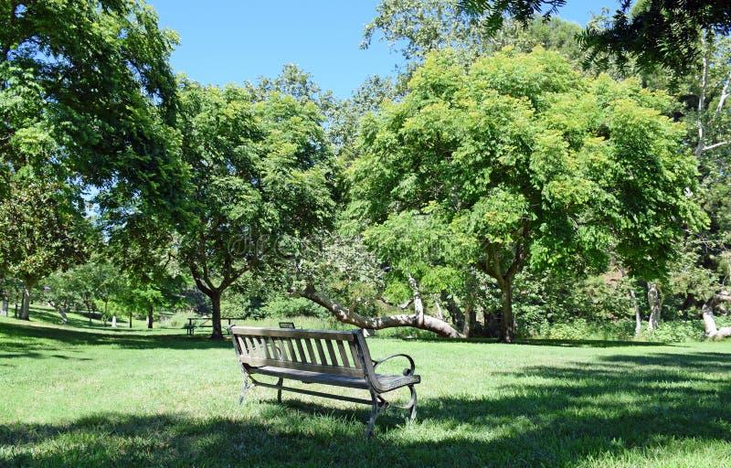 En inviterande bänk som omges av träd i a parkera-som inställning royaltyfri foto