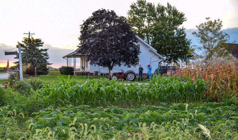 En Iowa grönsakträdgård royaltyfria bilder