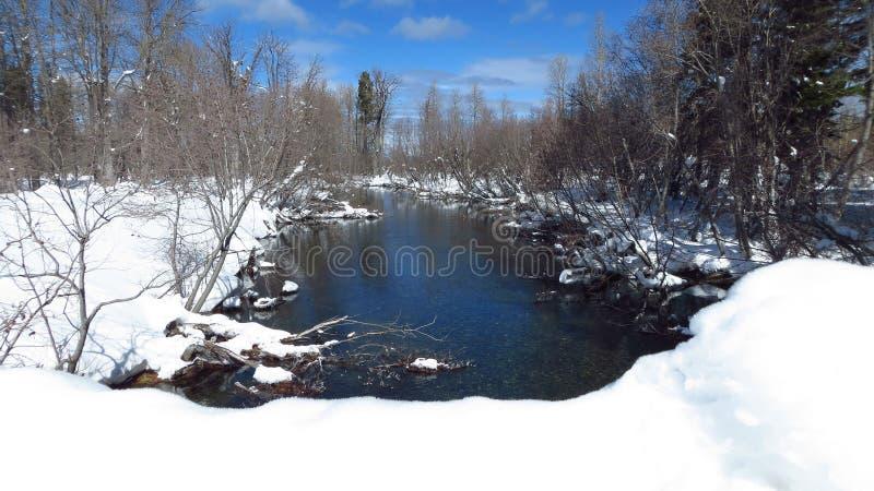 En iskall flod med snöig banker arkivfoton