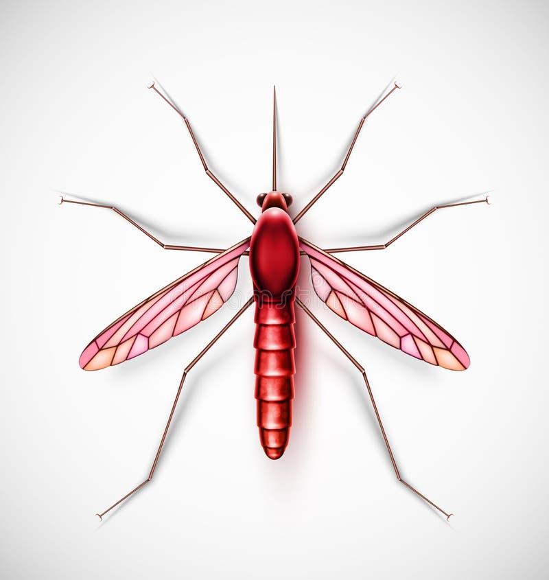 En isolerad mygga, eps 10 royaltyfri illustrationer