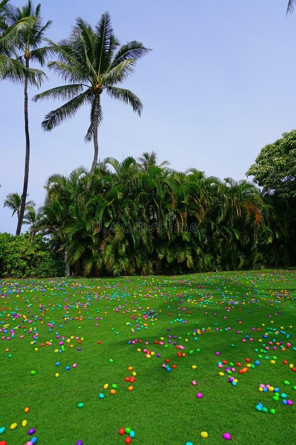 En jakt för påskägg med plast- ägg på en grön gräsmatta royaltyfria bilder
