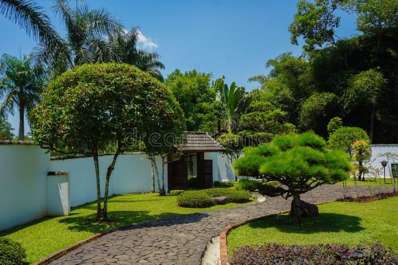 En japansk väg eller bana på trädgården med vaggar eller stenar strukturen med det gröna trädet och bonsai - foto royaltyfria foton