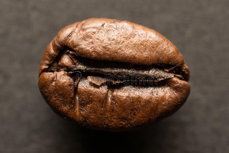 En kaffeböna på träbrädet, closeup x royaltyfria bilder
