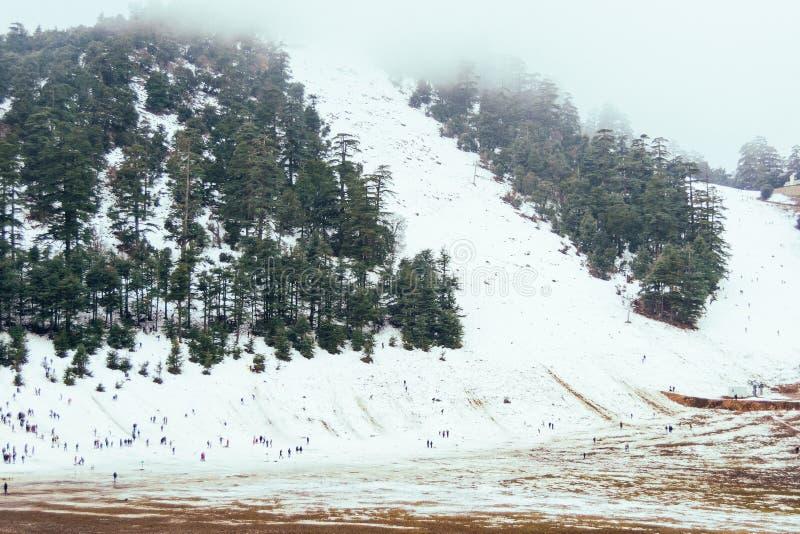 En kall härlig snöig dag i is i vinter royaltyfria bilder