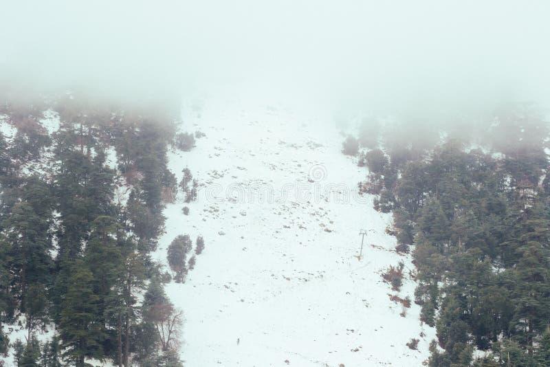 En kall härlig snöig dag i is i vinter royaltyfri bild