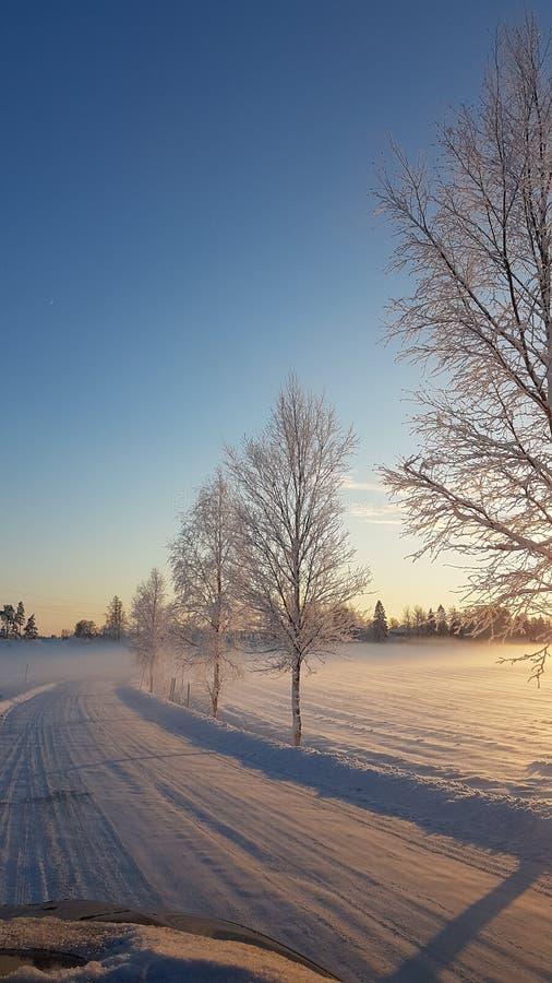 En kall vinterdag arkivfoton