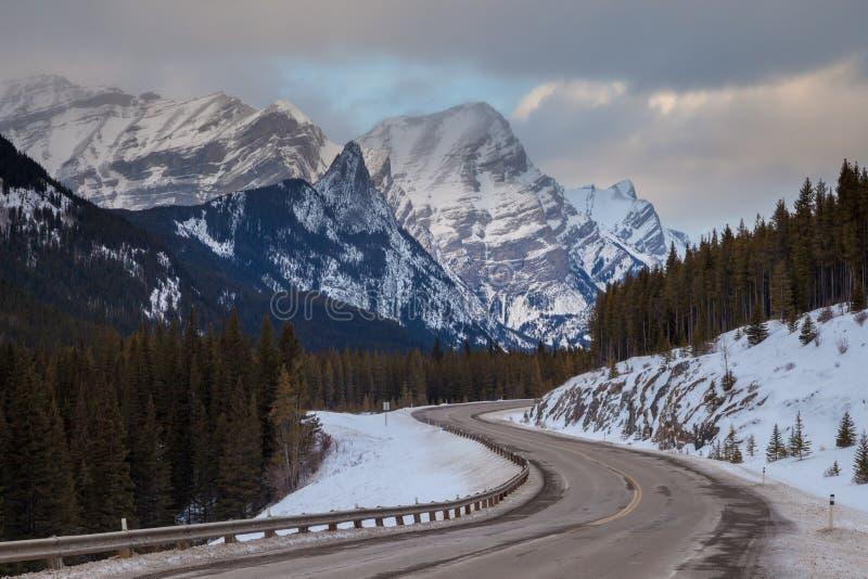 En kall vinterdag längs huvudväg 40 i Peter Lougheed Provincial Park, Kananaskis, kanadensare Rocky Mountains, Alberta royaltyfria bilder