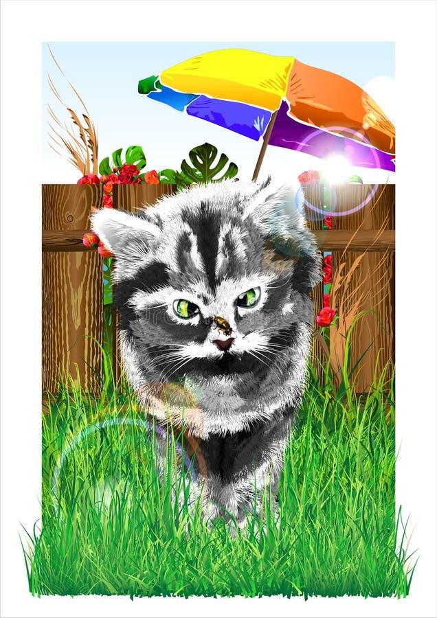 En kattunge och ett bi royaltyfri illustrationer